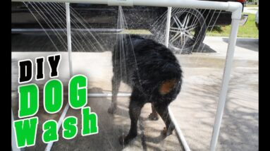 DIY PVC Outdoor dog Shower
