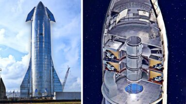What's Inside The SpaceX Starship?